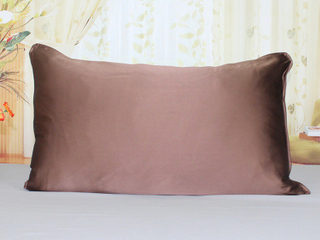 Organic Silk Satin Travel Pillow Case for Skin